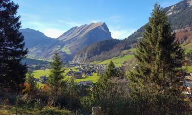 Ferienwohnungen in Schnepfau