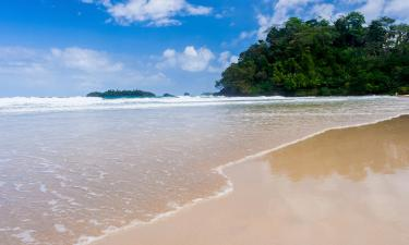 Hotels in Bocas Town