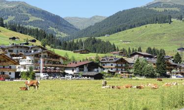 Apartments in Gerlosberg
