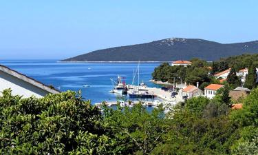 Apartments in Molat