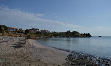 Mga Beach Hotel sa Arapya