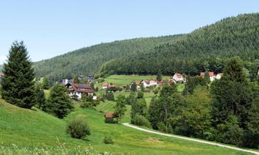 Apartments in Baiersbronn