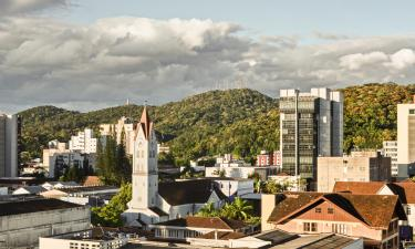 Pet-Friendly Hotels in Joinville