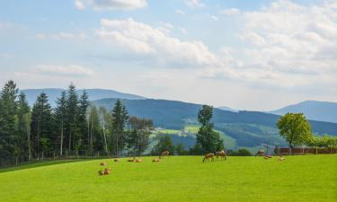 Hotels in Miesenbach