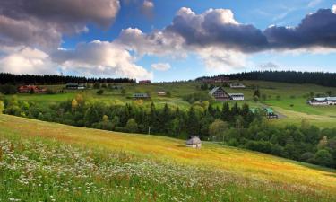 Hôtels à Vrchlabí