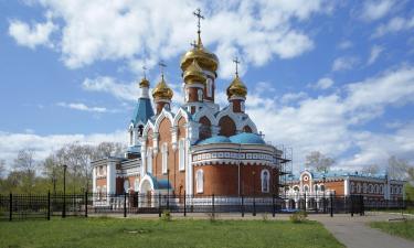 Pet-Friendly Hotels in Komsomolsk-on-Amur