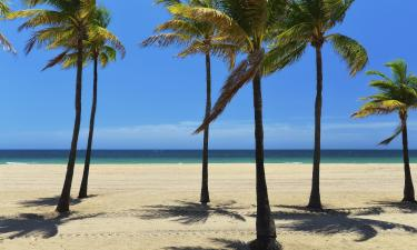 Hotels with Parking in Palm Beach Shores