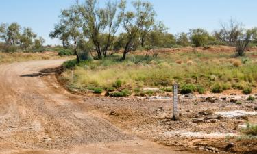 Pet-Friendly Hotels in Coober Pedy