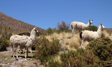 Hoteles en Cochabamba
