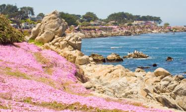 B&Bs in Pacific Grove