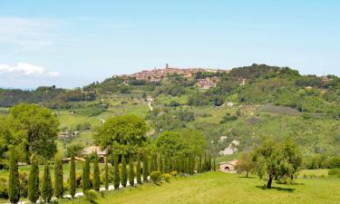 Vacation Rentals in Radicondoli