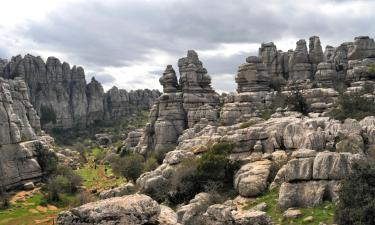 Pet-Friendly Hotels in Antequera