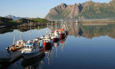 Pet-Friendly Hotels in Hovden