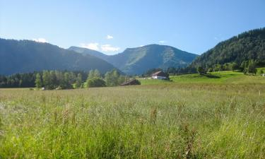Ski Resorts in Steibis