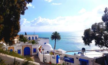 Vacation Rentals in Sidi Bou Saïd