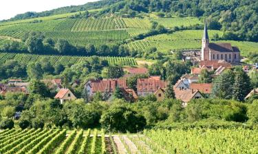 Hotels with Parking in Andlau