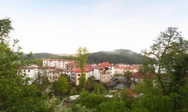 Hoteles en Zubiri