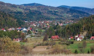 Domki górskie w Zawoi