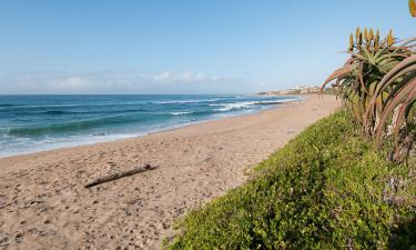 Resorts in Shelly Beach
