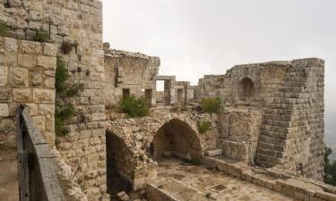 Vacation Rentals in Ajloun