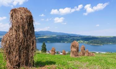 Obiekty na wynajem sezonowy w Zagórzu Śląskim