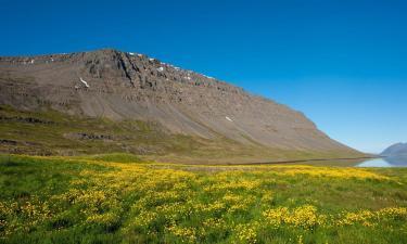 Hotels in Patreksfjörður