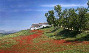 Casas de campo en Cortes de la Frontera