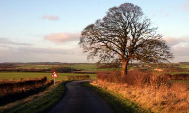 Pet-Friendly Hotels in Sleaford