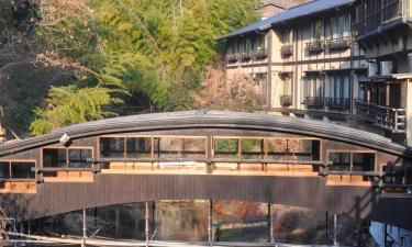 Ryokans in Minamioguni