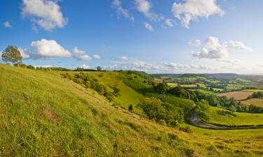 Pet-Friendly Hotels in Chipping Norton