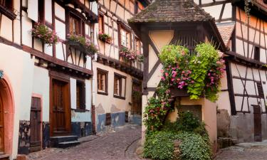 Apartments in Eguisheim