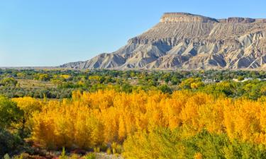 Pet-Friendly Hotels in Grand Junction