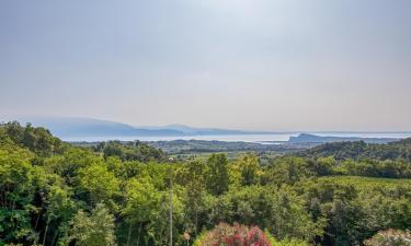 Case per le vacanze a Puegnago