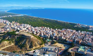 Vacation Rentals in Guardamar del Segura
