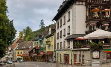 Guest Houses in Triberg