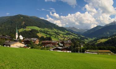 Guest Houses in Alpbach