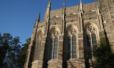 Pet-Friendly Hotels in Chapel Hill