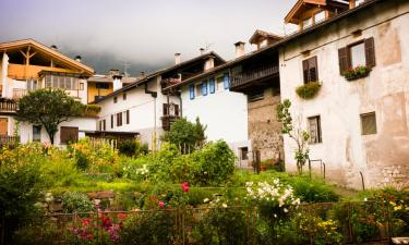 Apartments in Tesero