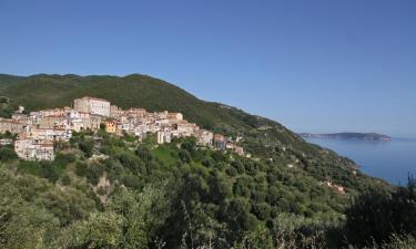 Apartments in Pisciotta