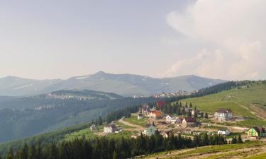 Guest Houses in Novaci-Străini