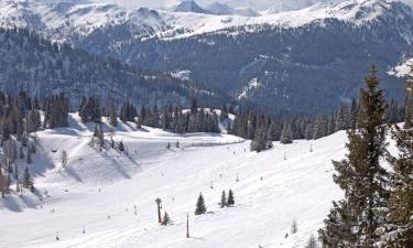 Vacation Rentals in Alpendorf