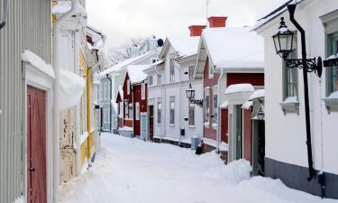 Pet-Friendly Hotels in Gävle