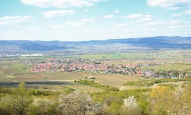 Ferienwohnungen in Bad Krozingen
