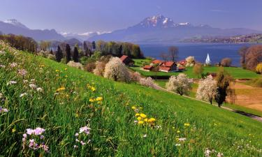 Hotels with Parking in Sigriswil