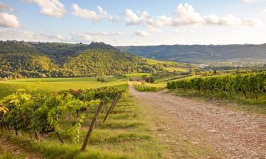 Lantgårdar i San Casciano in Val di Pesa