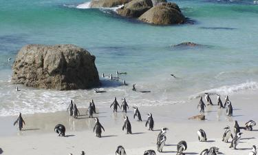 Hotels in Simon's Town