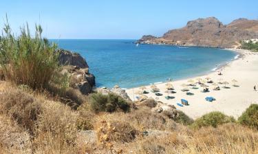 Жилье для отдыха в городе Дамнони