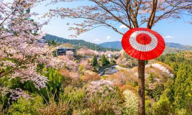 Hotels with Parking in Yoshino