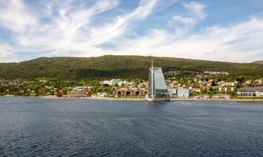 Pet-Friendly Hotels in Molde