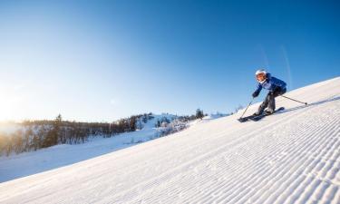 Ski Resorts in Al